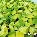 proveedores de aguacate congelado en Costa Rica frozen avocado hass costa rica chunks